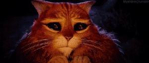 Pulsa en la imagen para verla en tamaño completo  Nombre: gato con botas.jpg Visitas: 1986 Tamaño: 74.0 KB ID: 551