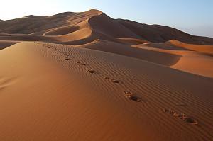 Pulsa en la imagen para verla en tamaño completo  Nombre: desierto-sahara-erg-chebbi.jpg Visitas: 978 Tamaño: 89.7 KB ID: 1790