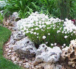Pulsa en la imagen para verla en tamaño completo  Nombre: decoracion-de-jardines-con-piedras2.jpg Visitas: 1108 Tamaño: 25.2 KB ID: 455